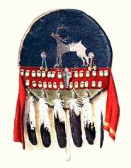 Native American Healers Shield